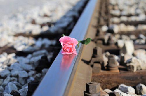 Article : Le suicide au Japon, le fléau du pays